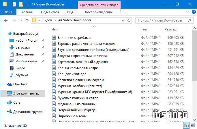 Результат работы программы 4K Video Downloader