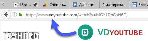 vdyoutube - сервис от буржуев