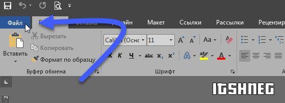 """Файл"" в интерфейсе MS Office Word"